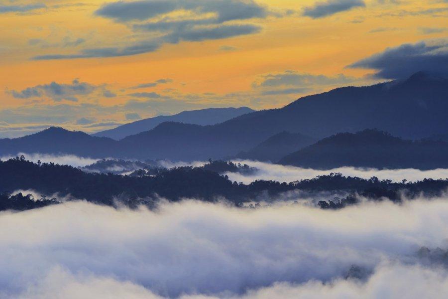 Vallée du Danum. (© Cn0ra))