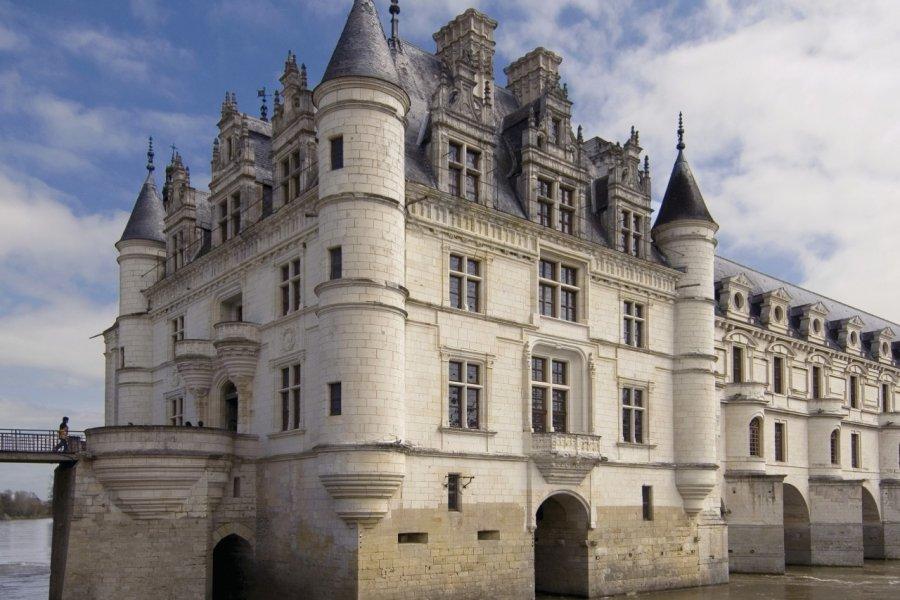 Le château de Chenonceau (© Eric Isselée - Fotolia))