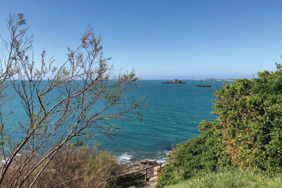 Vue sur la mer depuis le quartier de Port Riou, à Saint-Enogat. (© Floriane RAVARD))
