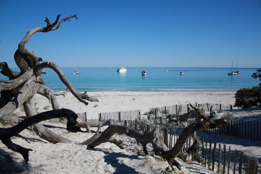 La plage de Saleccia (© Xavier Bonnin))