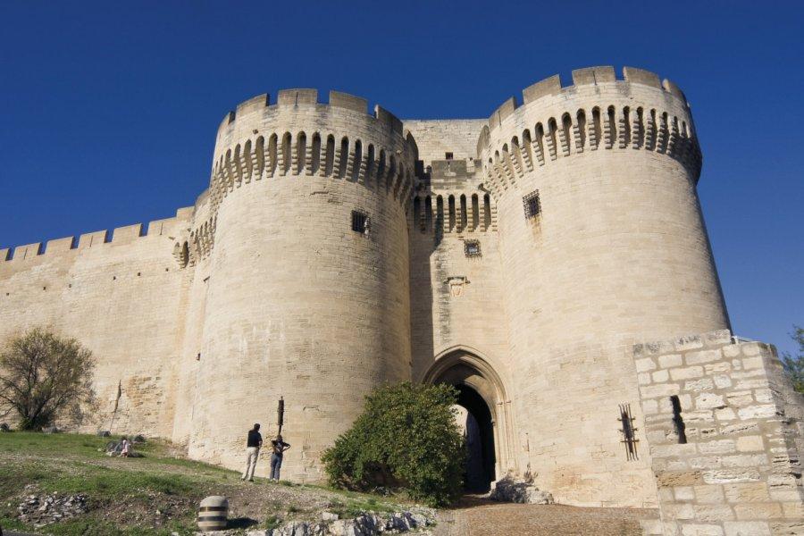 Le fort Saint-André à Villeneuve-lès-Avignon (© Olivier Tuffé - Fotolia))