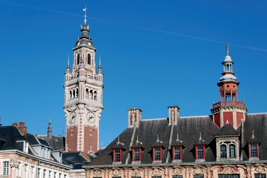 Le beffroi de la Chambre de Commerce et la Vieille Bourse de Lille (© DIDIER.VAN-DER-HAEGHEN - XILOPIX))