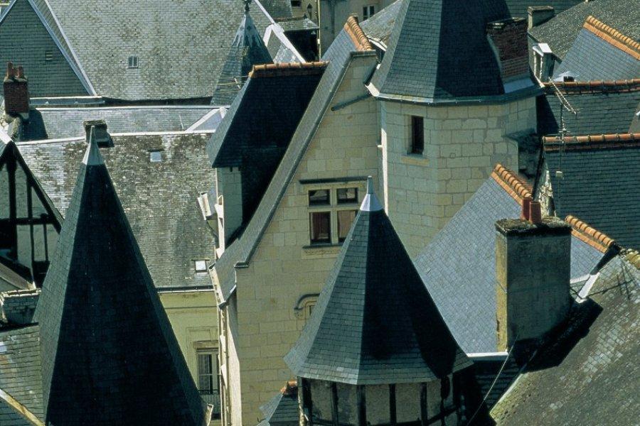Les toits de Chinon (© MARC JAUNEAUD - ICONOTEC))