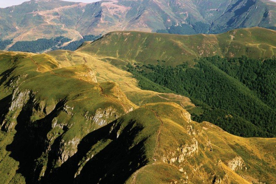 Parc naturel des volcans d'Auvergne. (© Kodachrome25 - iStockphoto))