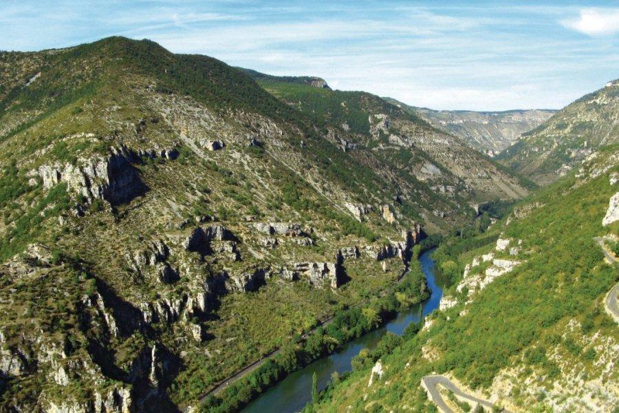 Les gorges du Tarn (© MACUMAZAHN - FOTOLIA))