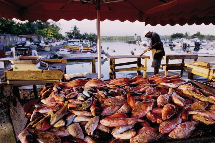 Port de pêche de Pointe-à-Pître. (© Vincent FORMICA))