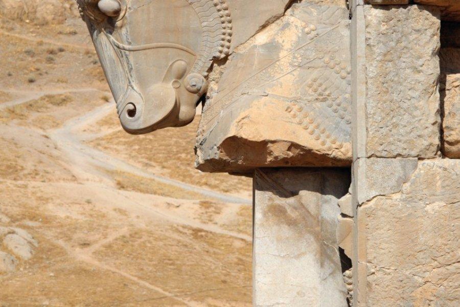 Statue d'une tête de cheval dans les ruines de Persépolis. (© Massimo Pizzotti))