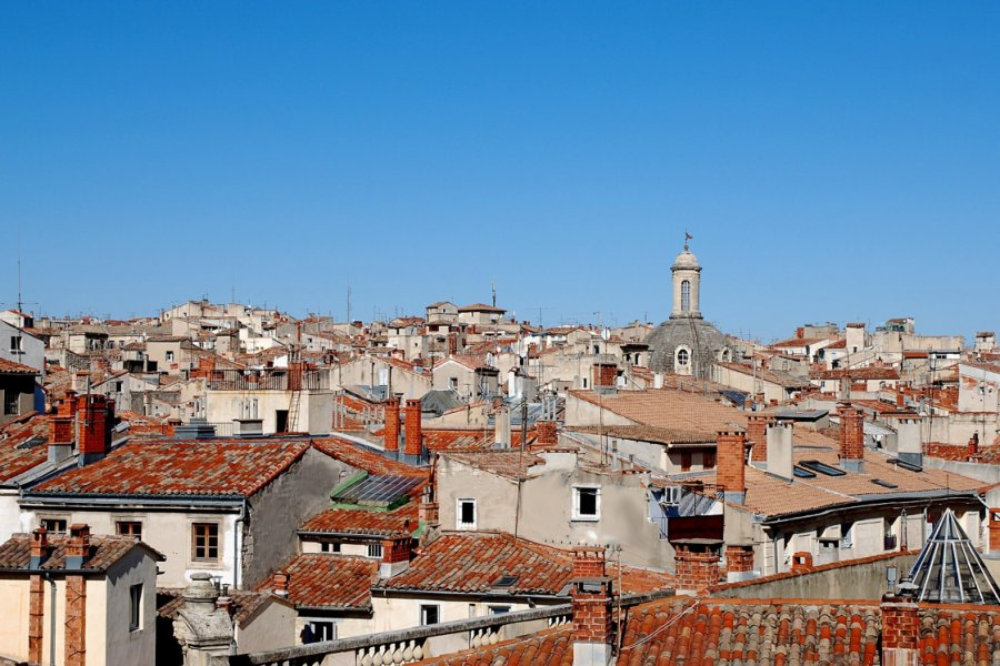 Vue sur les toits de Montpellier. (© Véviga))