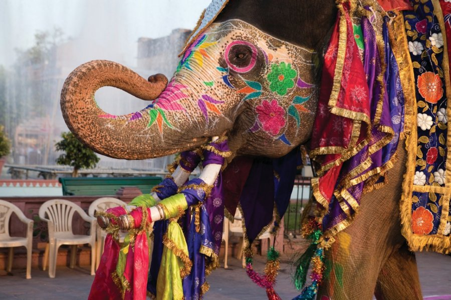 Gangaur festival de Jaipur. (© OSTILL - iStockphoto))