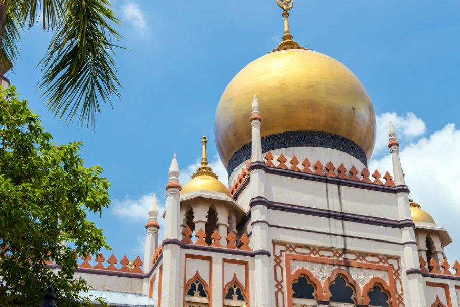 Mosquée du Sultan. (© vichie81 - Shutterstock.com))