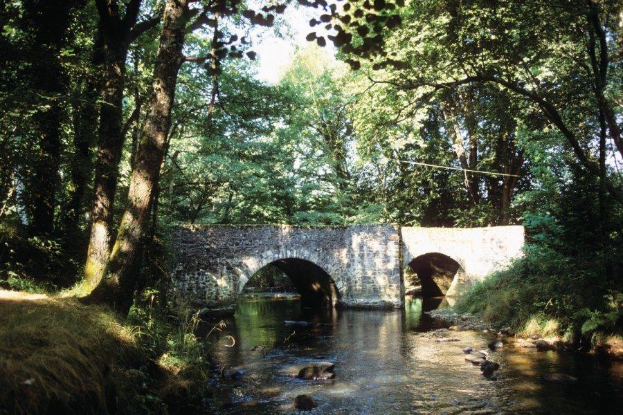 Pont médieval (© Florent RECLUS - Author's Image))