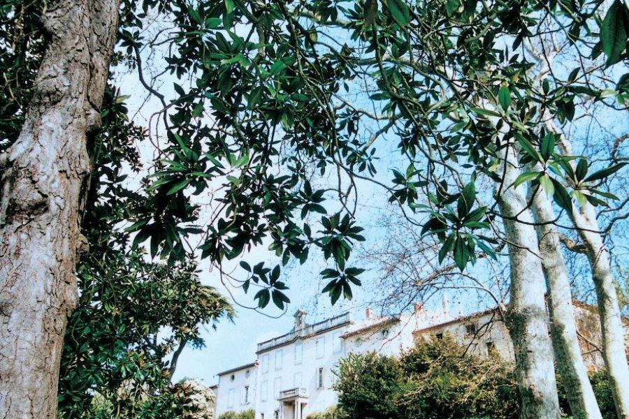 Château Auzias (vue de la marre). (© Dominique Auzias))