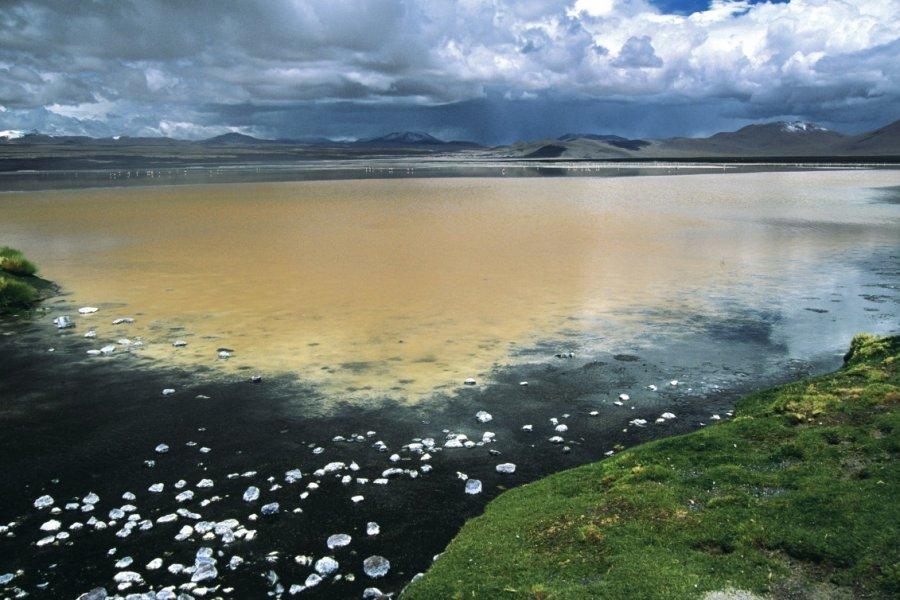 Vue de la laguna Colorada. (© Sylvie LIGON))