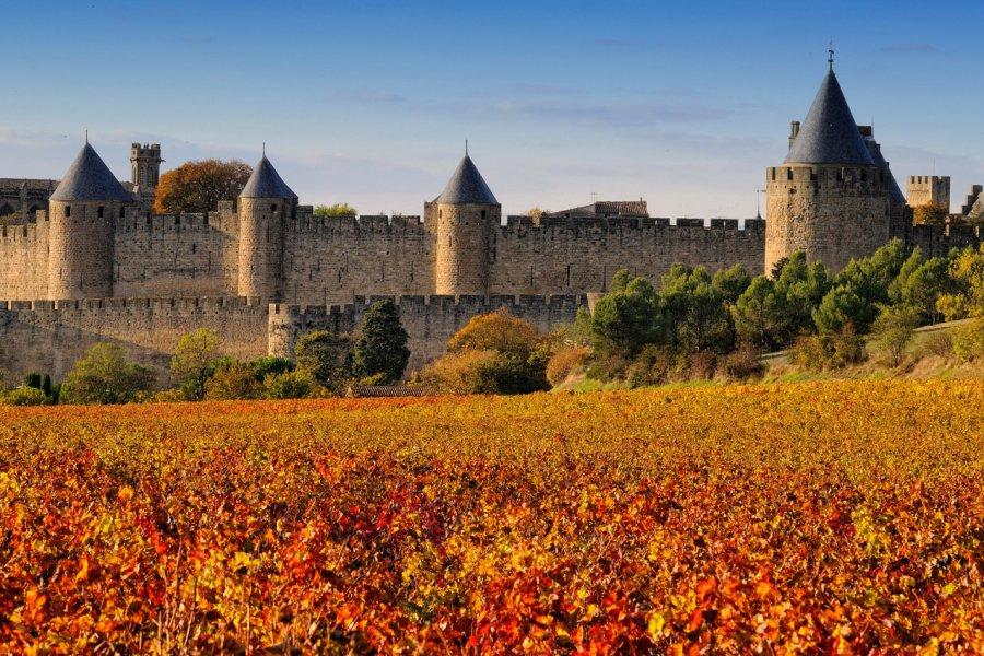 La cité de Carcassonne et son vignoble. (© Pat on stock - Fotolia))