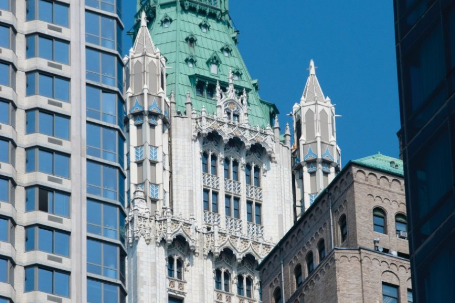 Woolworth Building (Financial District). (© Author's Image))