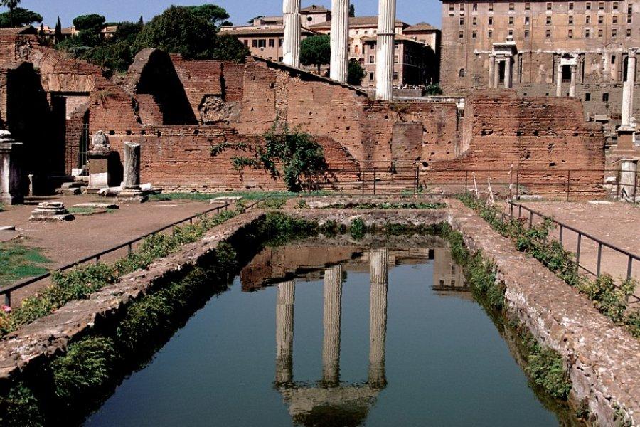 Temple de Castor et Pollux au Forum romain. (© Author's Image))