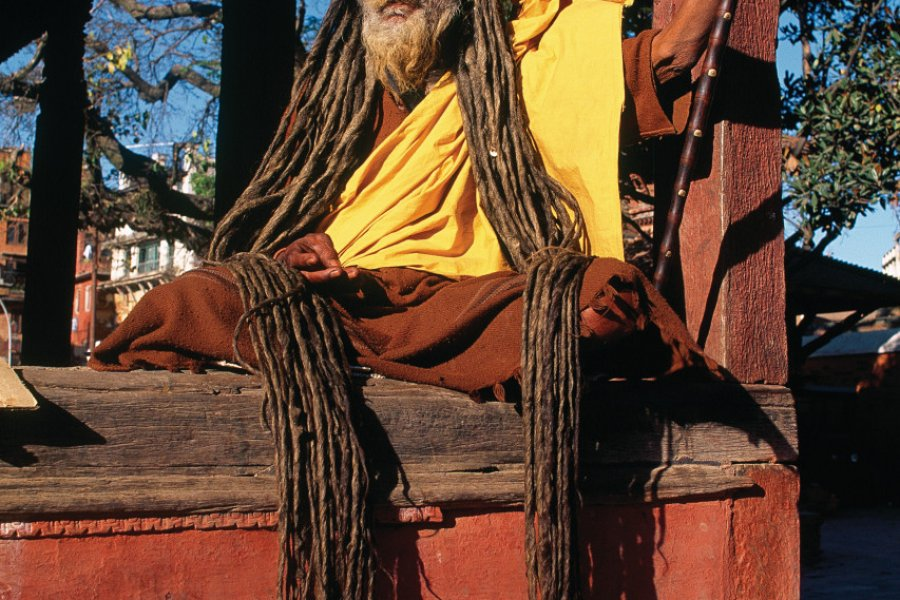 Les sadhus, saints hommes hindous, vivent uniquement de la récolte de dons. (© Author's Image))