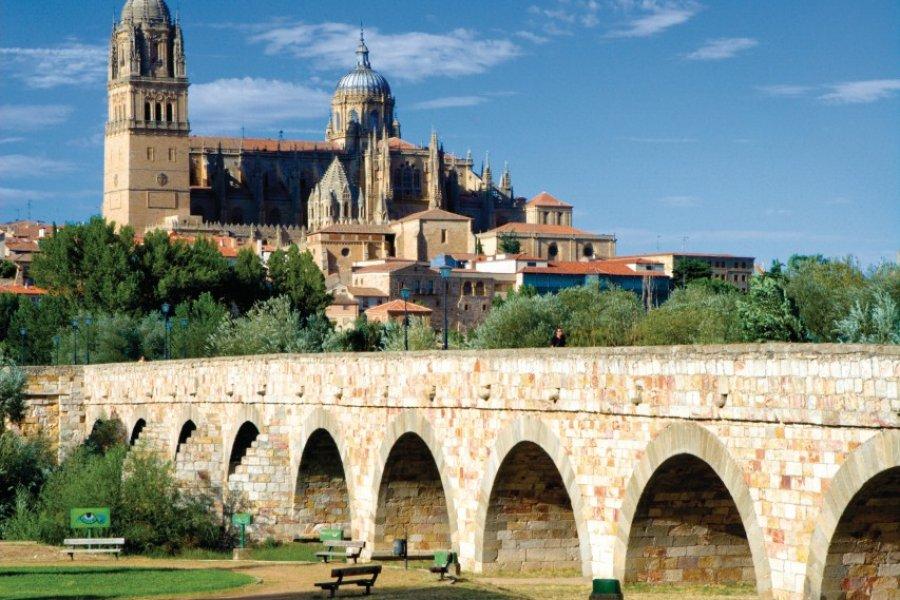 Pont romain et les Nouvelle et Ancienne Cathédrales (Catedral Nueva et Catedral Vieja). (© Author's Image))