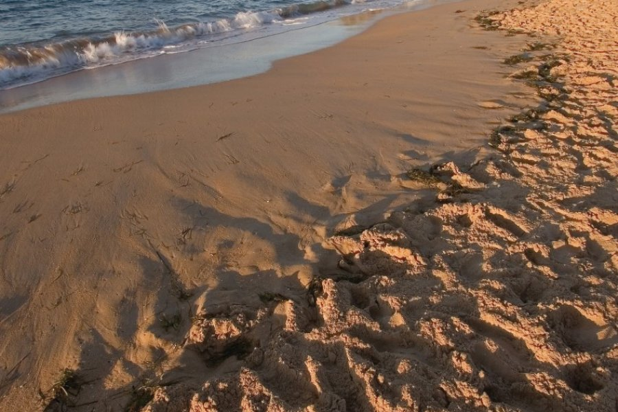 Playa con la Magdalena al fondo. (© BancoFotos - Fotolia))