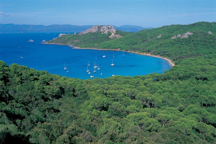 Crique sur l'île de Porquerolles (© HUGO CANABI - ICONOTEC))