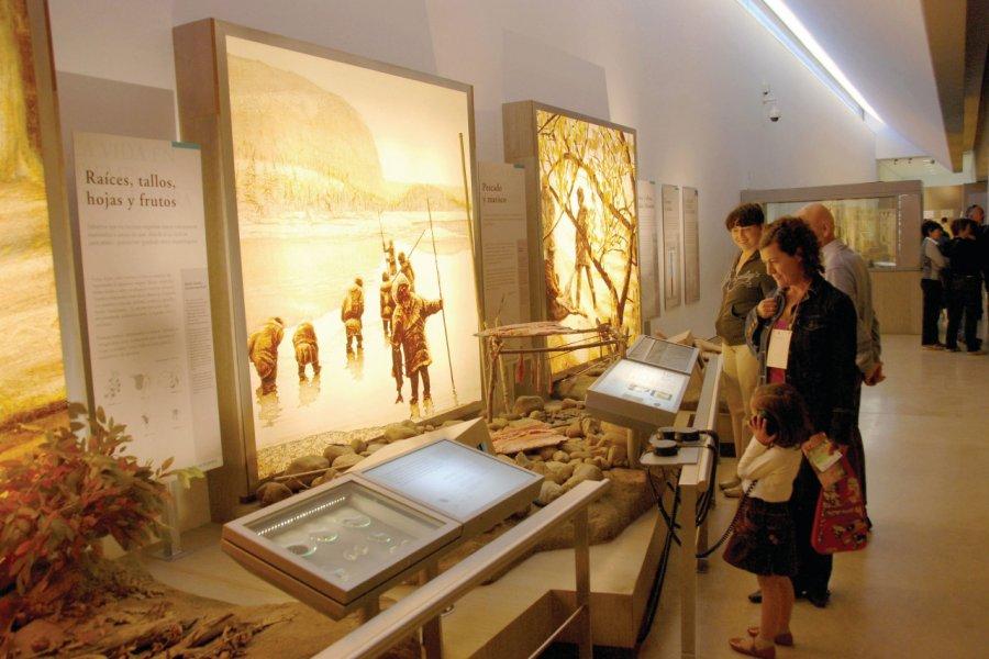 Musée d'Altamira. (© A.I.CARP))