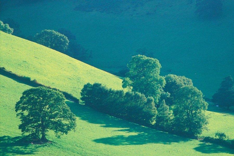Parc national d'Exmoor, du côté de Winford. (© Alamer - Iconotec))