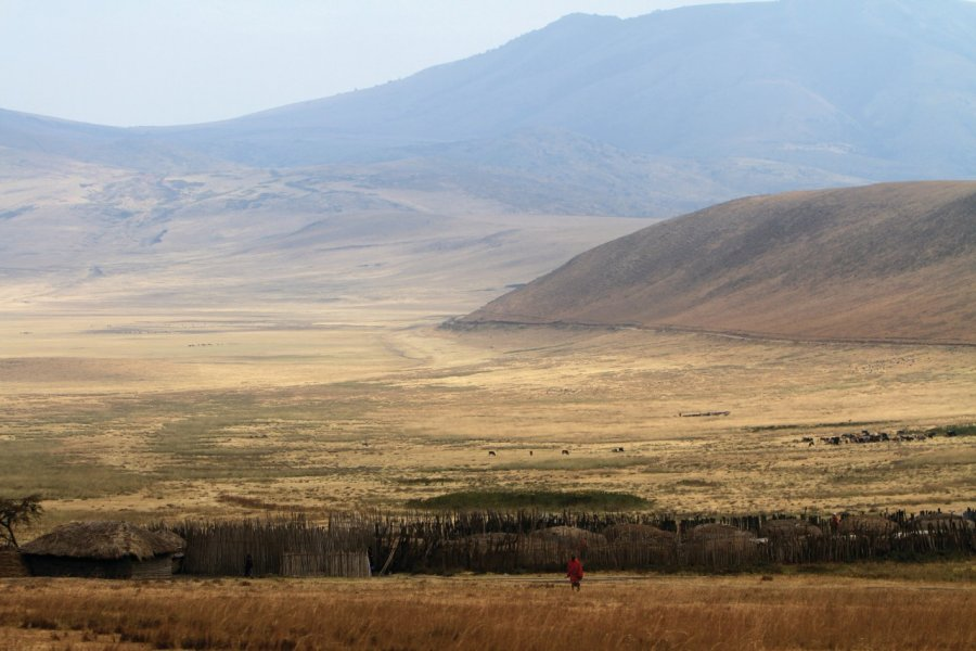 Paysage de l'aire de conservation du Ngorongoro (© Stephan SZEREMETA))