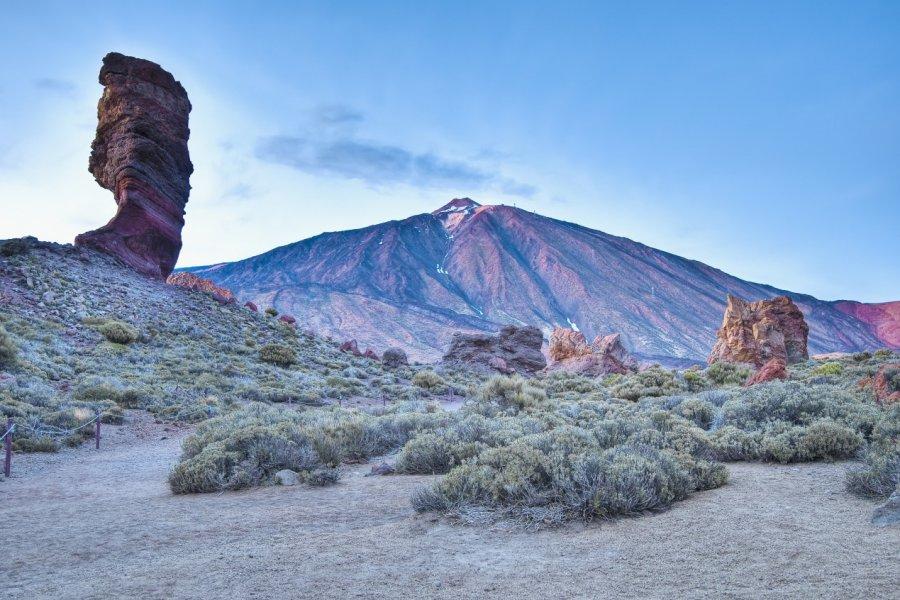 Las Cañadas del Teide, Parc national du Teide. (© Anibal Trejo - Shutterstock.com))