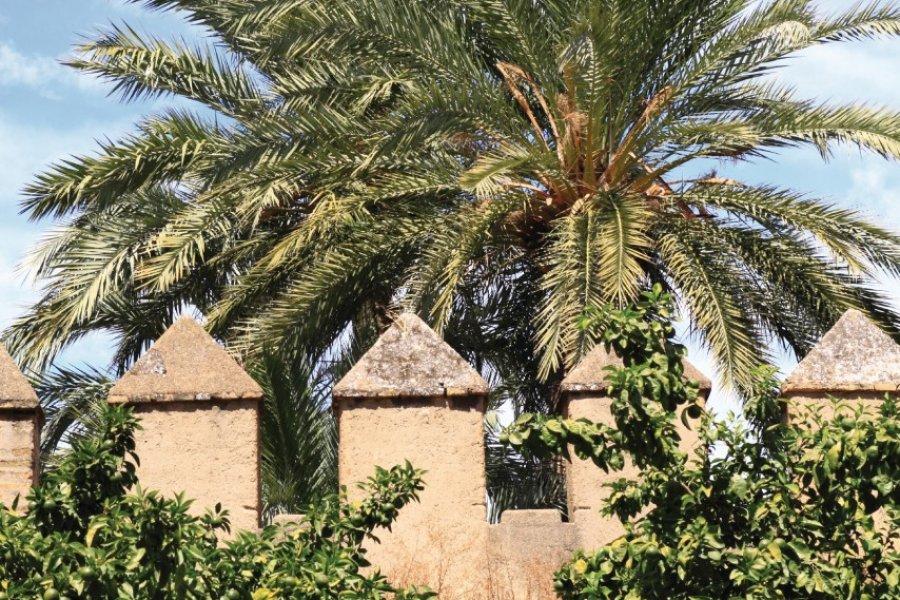 Remparts de la Macarena. (© biriberg - iStockphoto.com))
