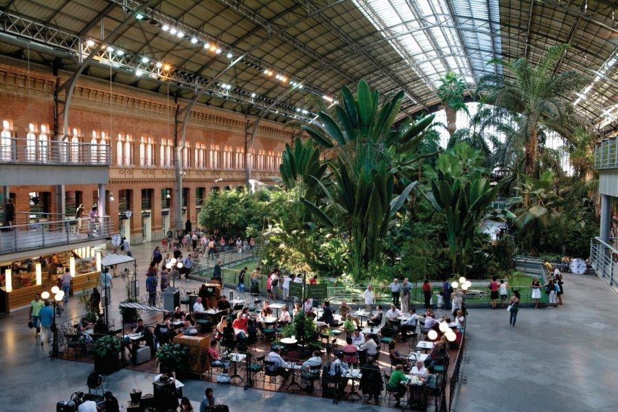 Gare d'Atocha, café et jardin d'hiver. (© Philippe GUERSAN - Author's Image))