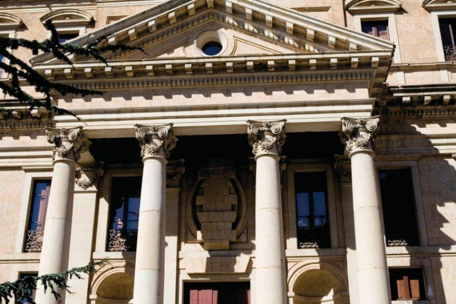 Palacio de Anaya. (© Author's Image))