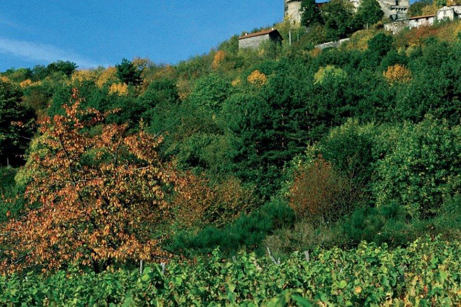 Le château de Tournoël, situé sur les hauteurs de Volvic (© PHOVOIR))