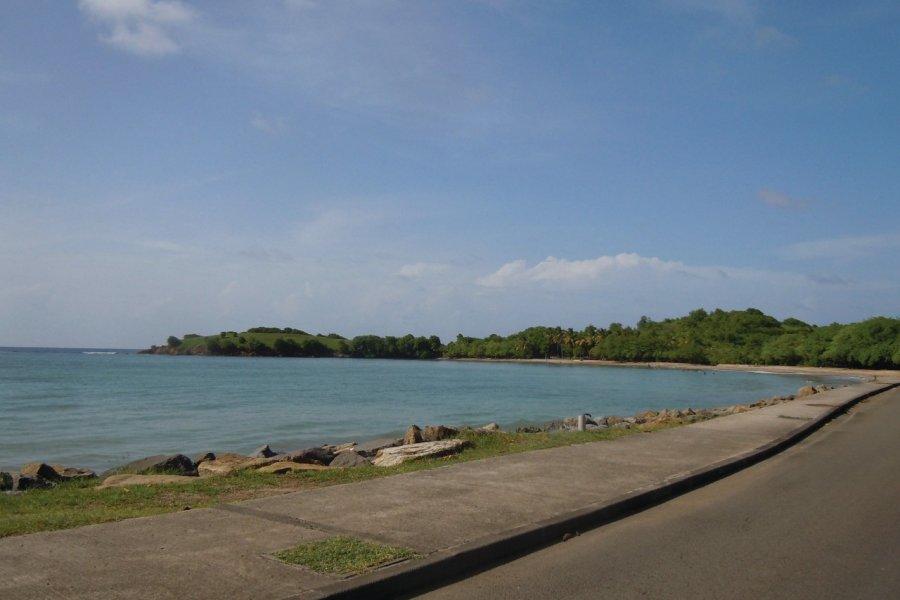 Baie de Tartane (© KARINE ANDRE))
