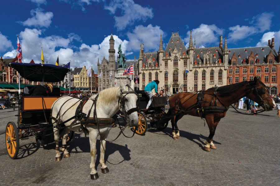 Grand-Place (Grote Markt). (© Lawrence BANAHAN - Author's Image))