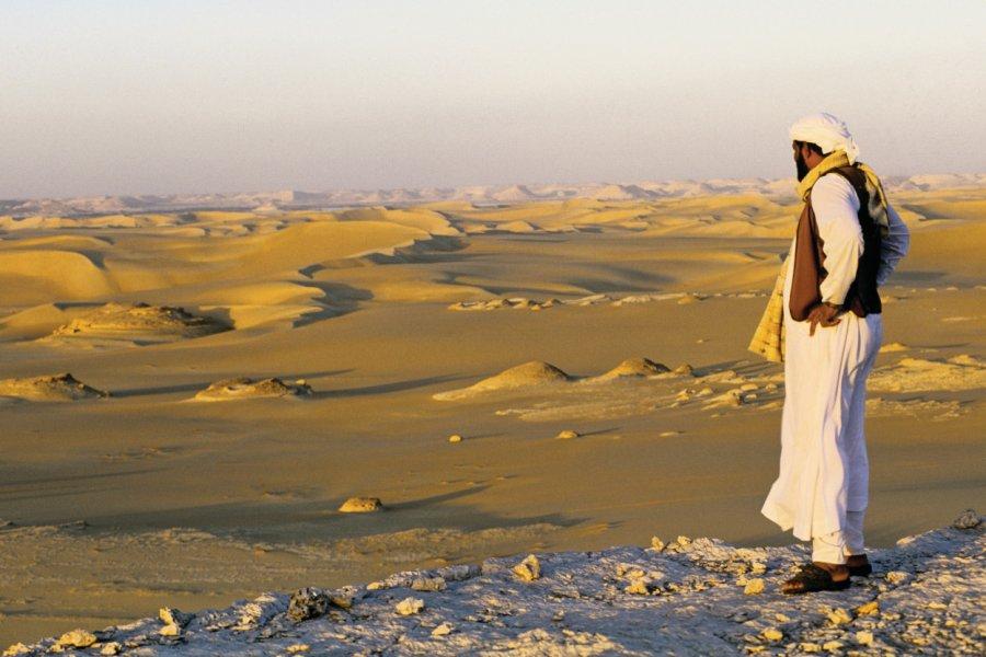 La mer de sable du désert Libyque. (© Ismaël Schwartz - Iconotec))