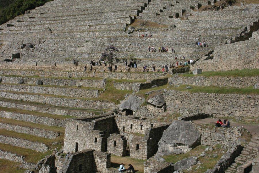 Terrasses du site de Machu Picchu. (© Stéphan SZEREMETA))