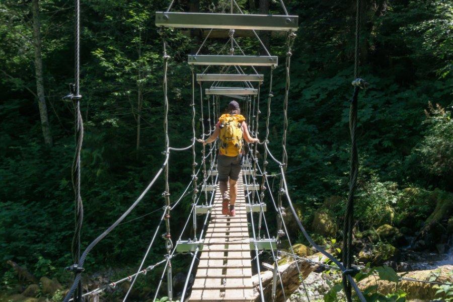 Pont suspendu vers Chilliwack. (© EB Adventure Photography - Shutterstock.com))