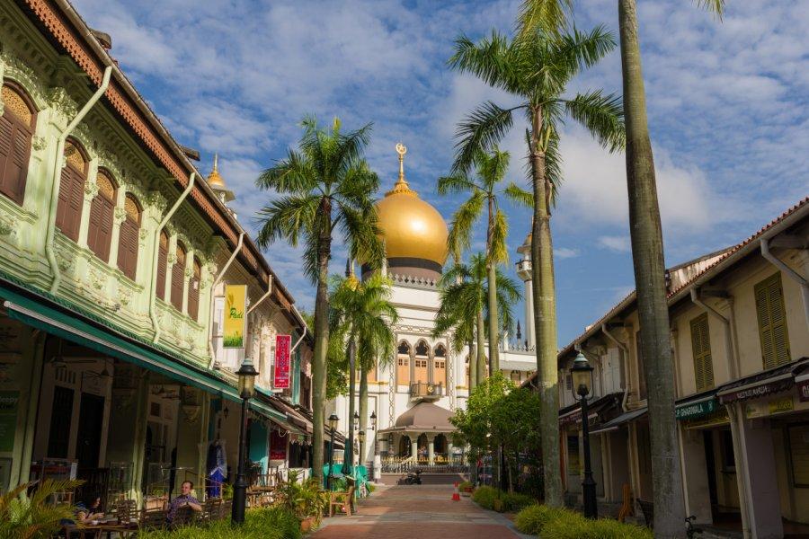 Vue sur la Sultan mosquée. (© Gnohz - Shutterstock.com))
