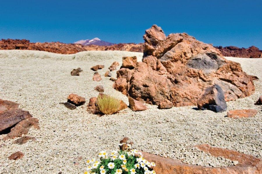 Mount Teide à Tenerife. (© habari1 - iStockphoto.com))