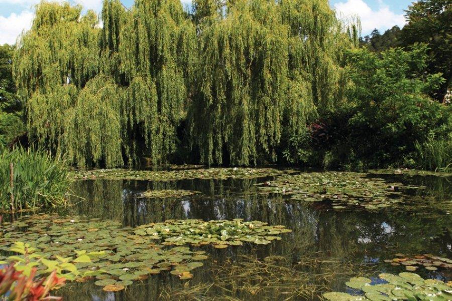 Le bassin des Nymphéas de Giverny (© Tom Prokop - Fotolia))