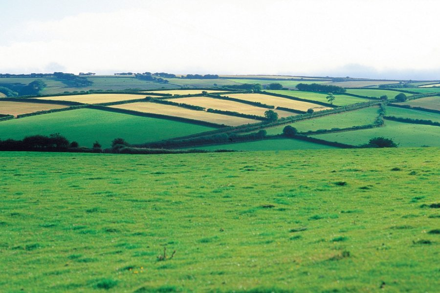 Parc national d'Exmoor. (© Alamer - Iconotec))