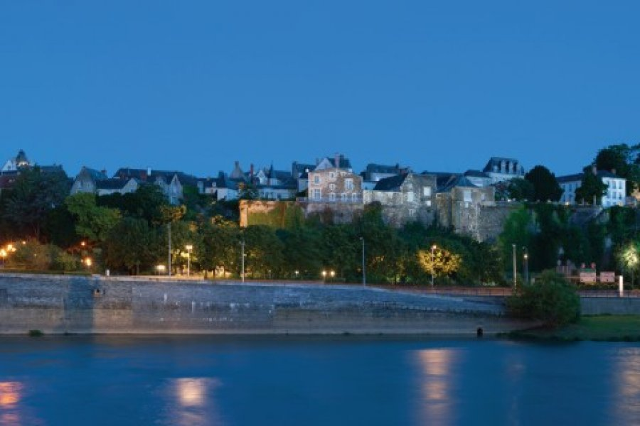 Panorama de la ville d'Angers. (© SergiyN - iStockphoto))