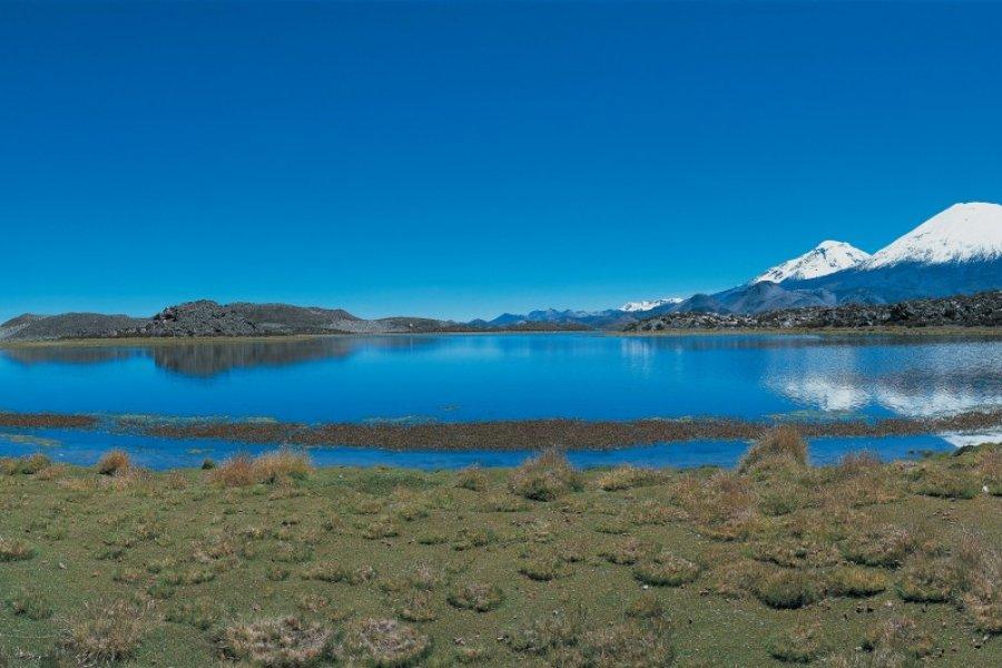 Laguna de Cotacotani et volcan Parinacota (© Joséphine - Iconotec))