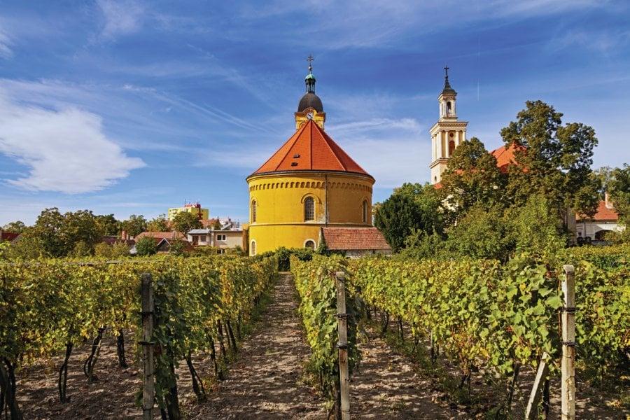 Route des vins des Petites Carpates. (© irakite))