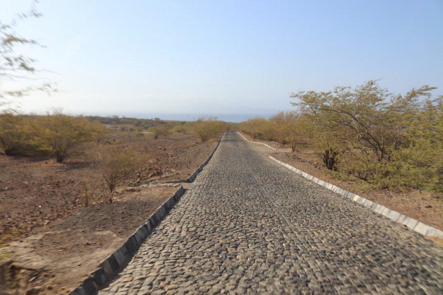 Ancienne route pavée de Porto Novo ou route touristique. (© Sarah DEHAUT))