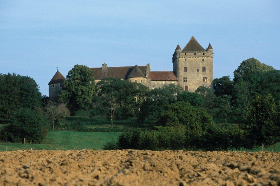 Château du Pin (© PIERRE DELAGUÉRARD - ICONOTEC))