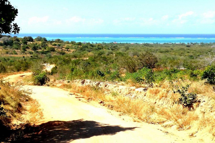 Route de Murrebue, Pemba. (© Elisa Vallon))