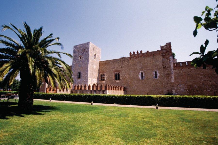 Le Palais des Rois de Majorque - Perpignan (© VINCENT FORMICA))