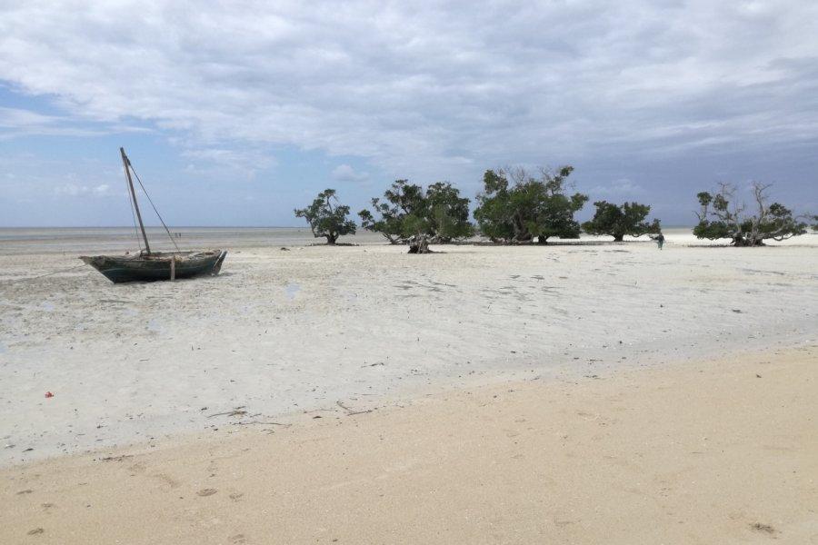 Quirimba et sa plage à marrée basse. (© Elisa Vallon))