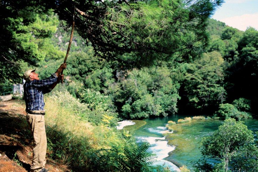 Parc national de Krka. (© Author's Image))